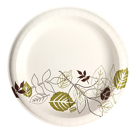 "10"" HEAVYWEIGHT PAPER PLATES  PATHWAYS DESIGN- 4 PKG./CS"